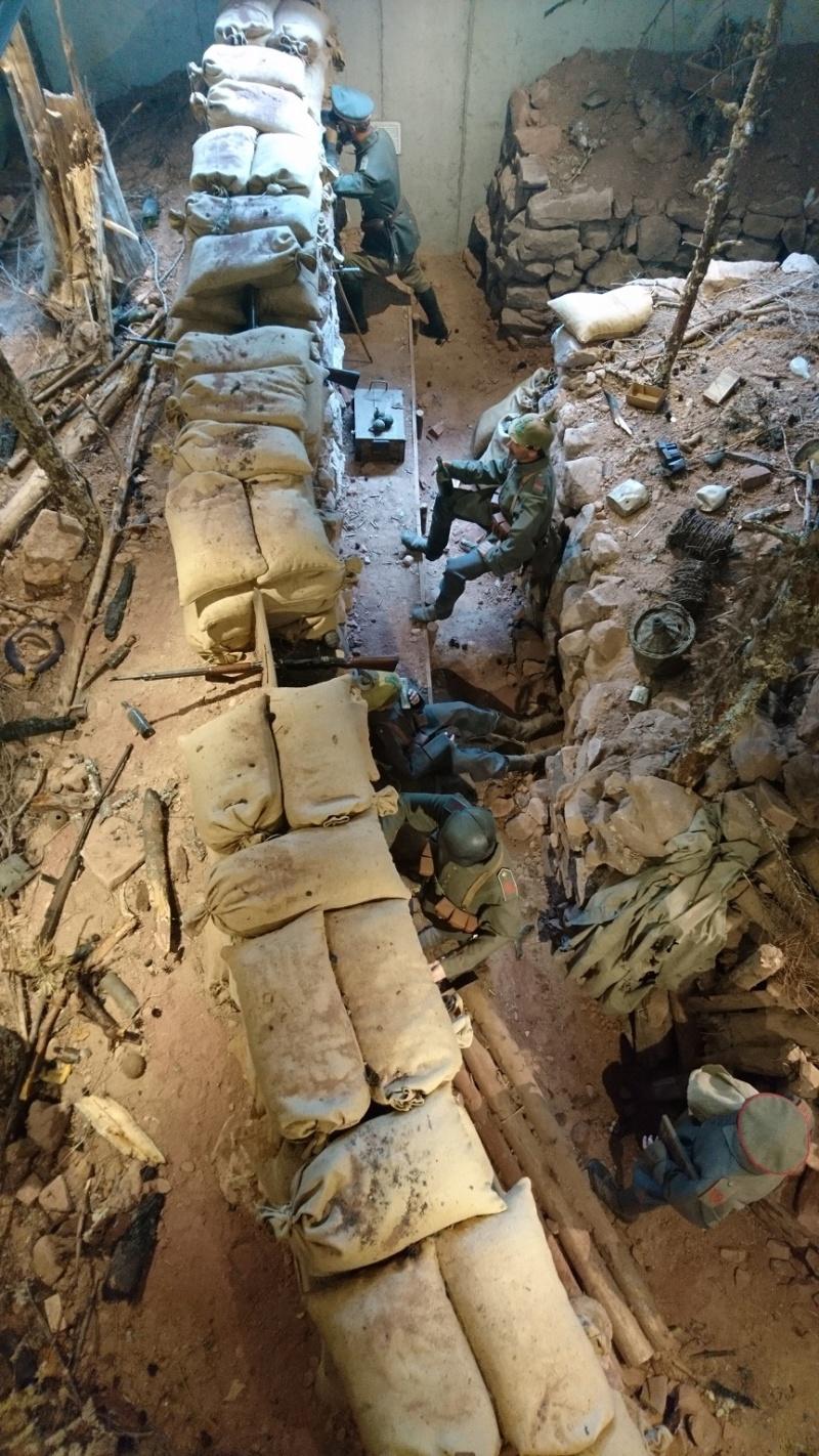 Musée de la bataille du Linge -1915 ( Orbey , Haut Rhin / Alsace ) Dsc_0121