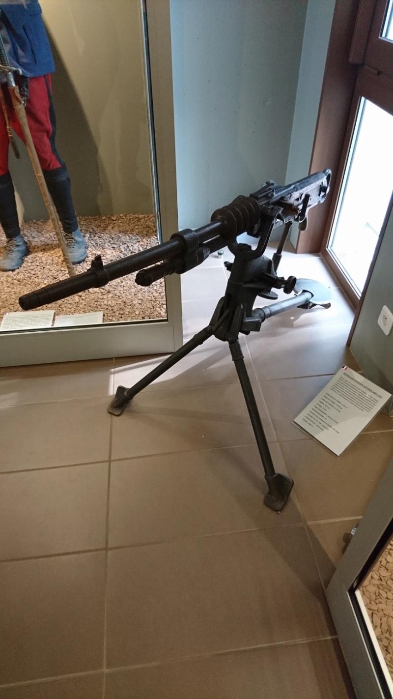 Musée de la bataille du Linge -1915 ( Orbey , Haut Rhin / Alsace ) Dsc_0134