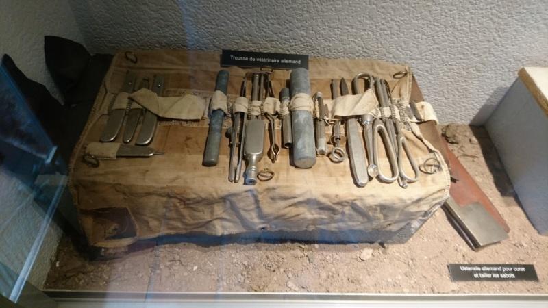 Musée de la bataille du Linge -1915 ( Orbey , Haut Rhin / Alsace ) - Page 2 Dsc_0149
