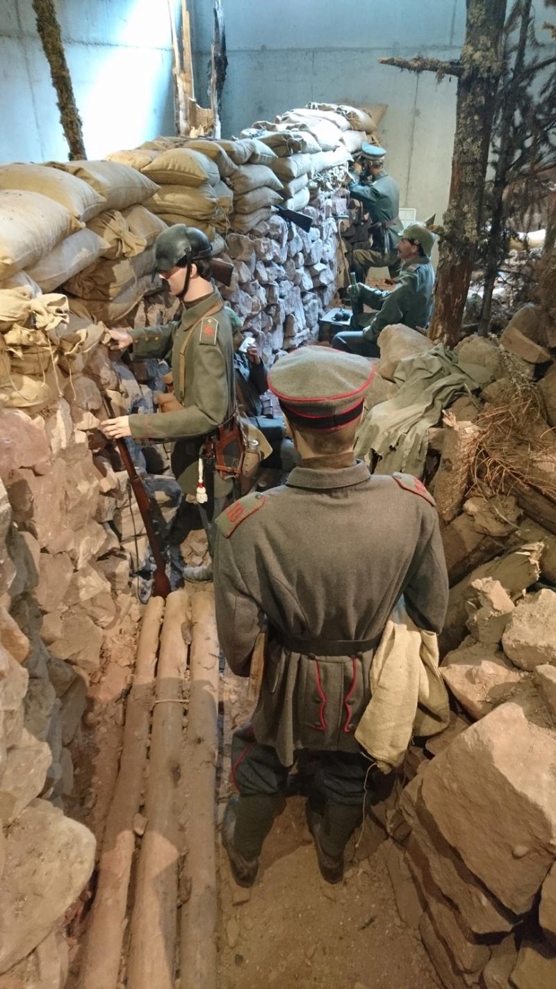 Musée de la bataille du Linge -1915 ( Orbey , Haut Rhin / Alsace ) - Page 2 Dsc_0155