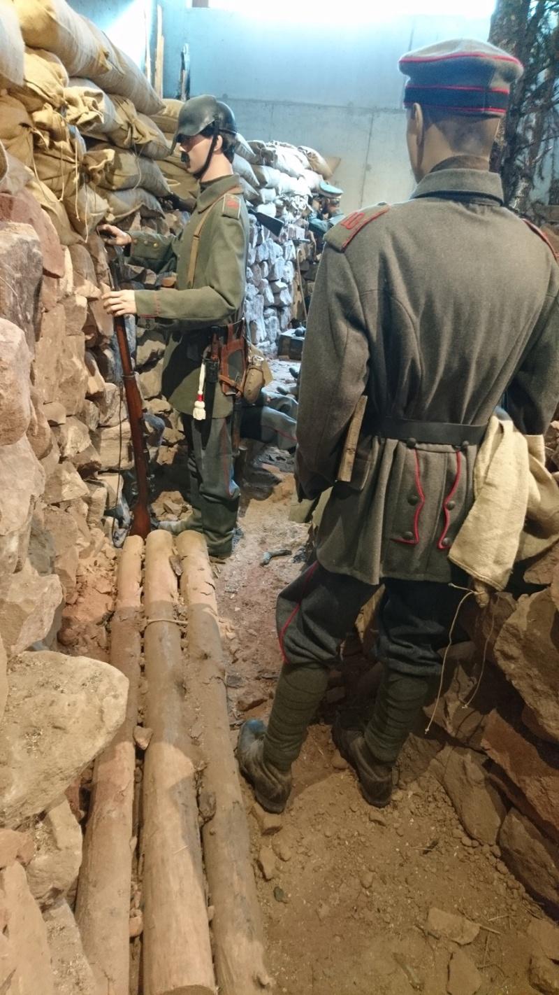 Musée de la bataille du Linge -1915 ( Orbey , Haut Rhin / Alsace ) - Page 2 Dsc_0156