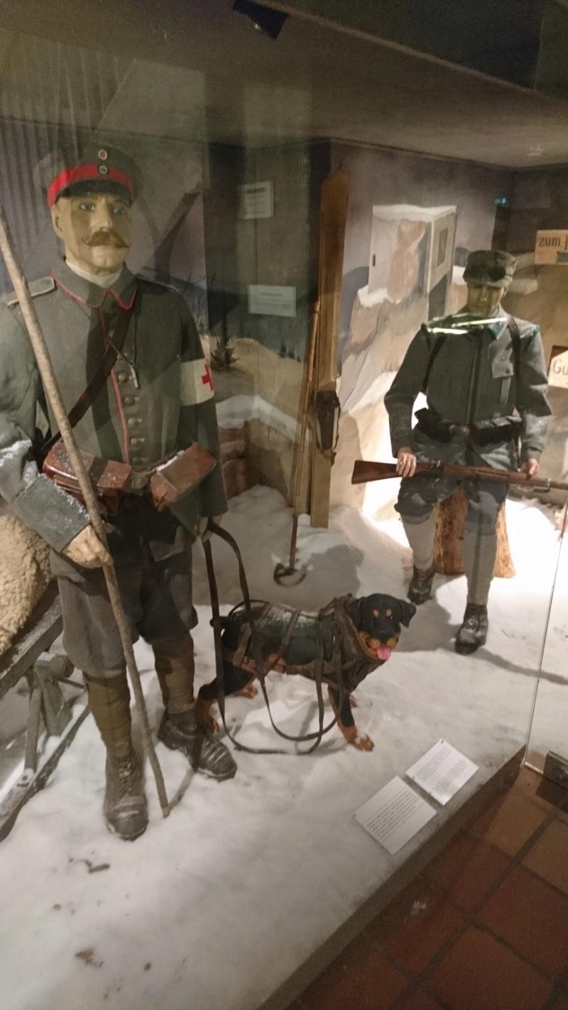 Musée de la bataille du Linge -1915 ( Orbey , Haut Rhin / Alsace ) - Page 2 Dsc_0160