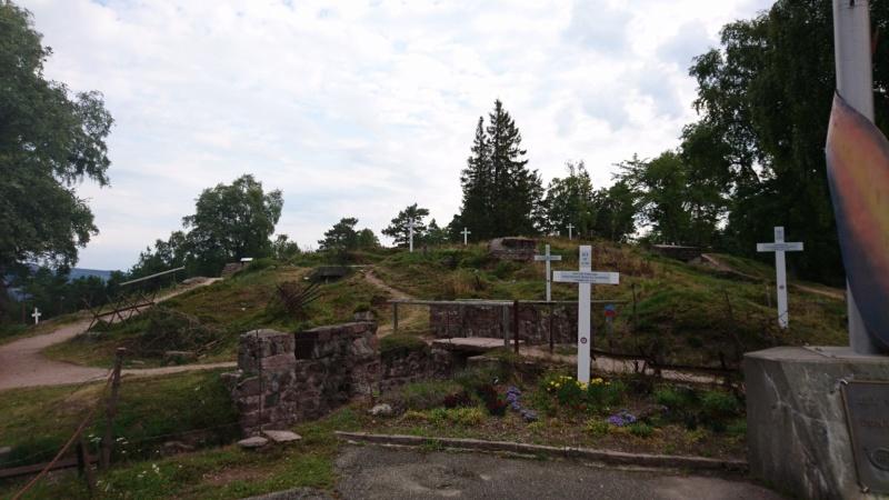 Le champ de bataille du Linge (1ère partie) Dsc_0169