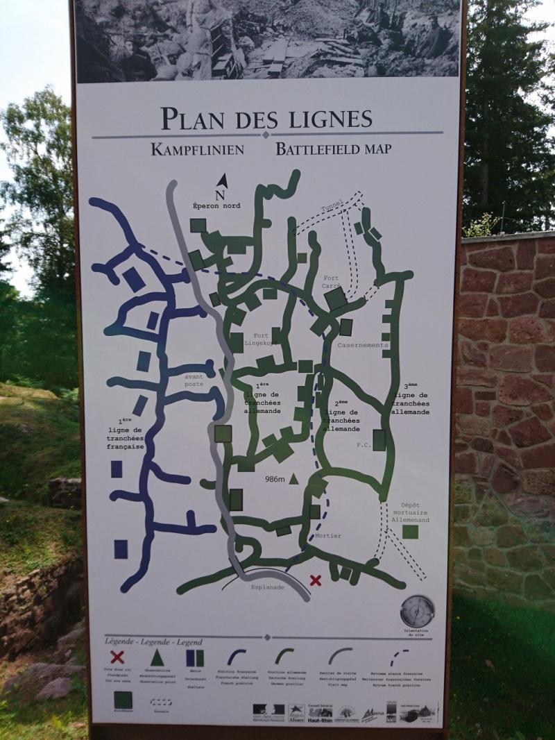Le champ de bataille du Linge (1ère partie) Dsc_0241