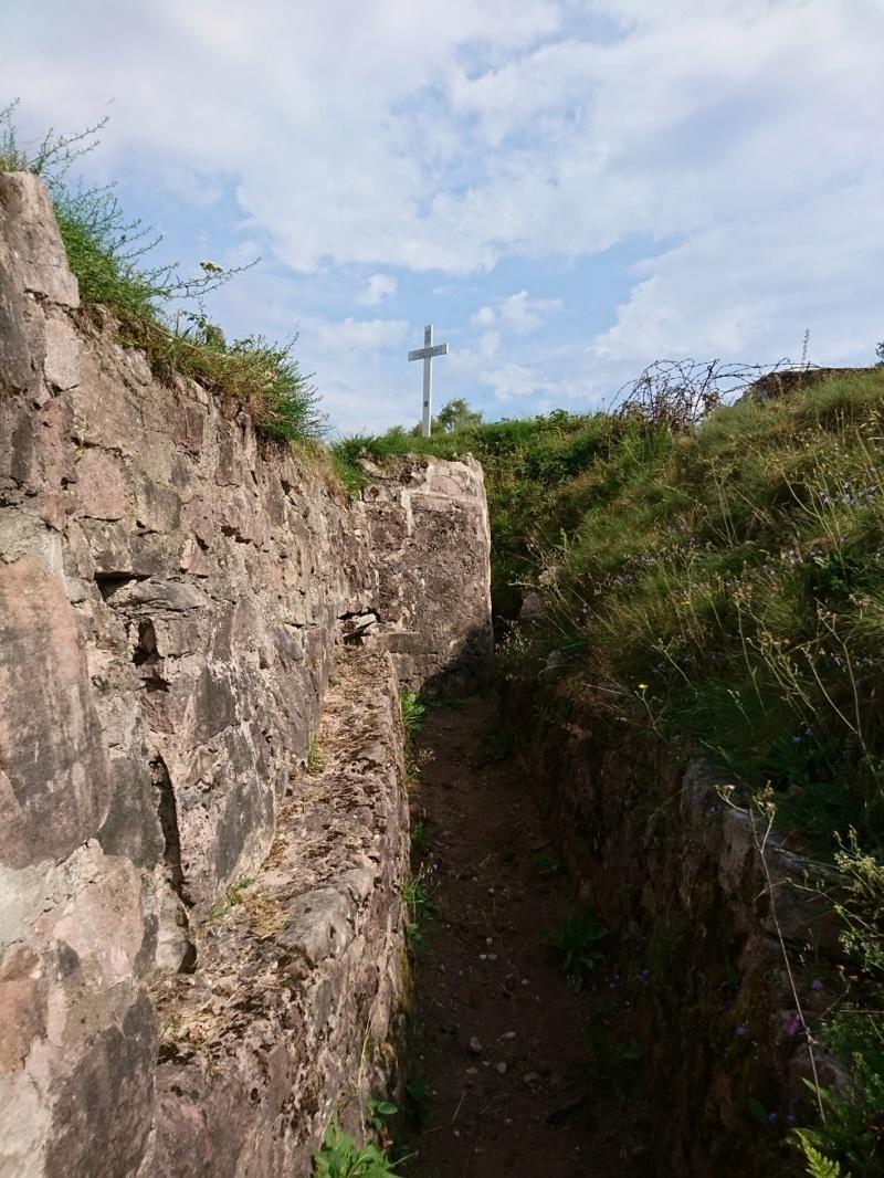 Le champ de bataille du Linge (1ère partie) Dsc_0246