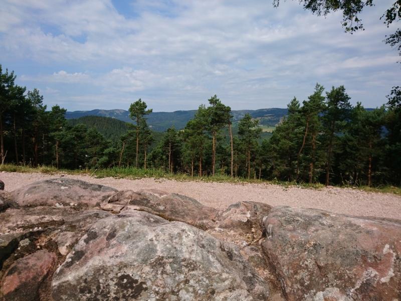 Le champ de bataille du Linge (1ère partie) Dsc_0249