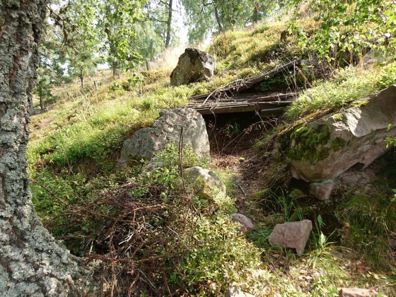 Le champ de bataille du Linge (1ère partie) Dsc_0252