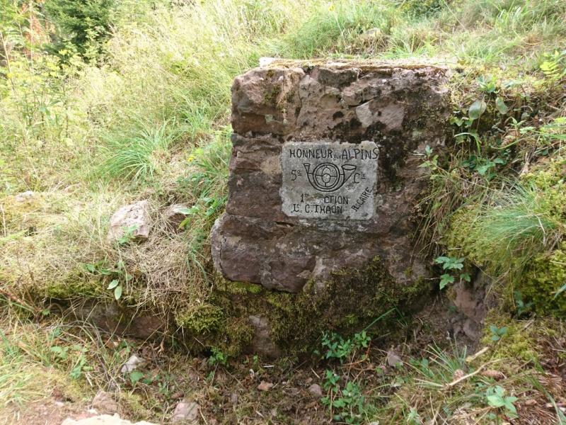 Le champ de bataille du Linge (1ère partie) Dsc_0253