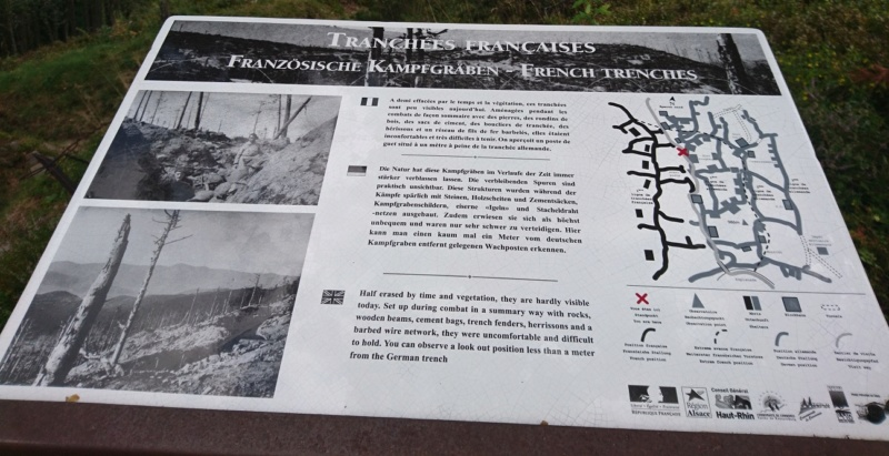 Le champ de bataille du Linge (1ère partie) Dsc_0257
