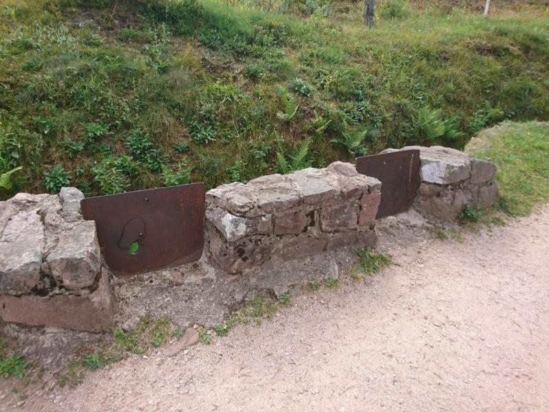 Le champ de bataille du Linge (1ère partie) Dsc_0259