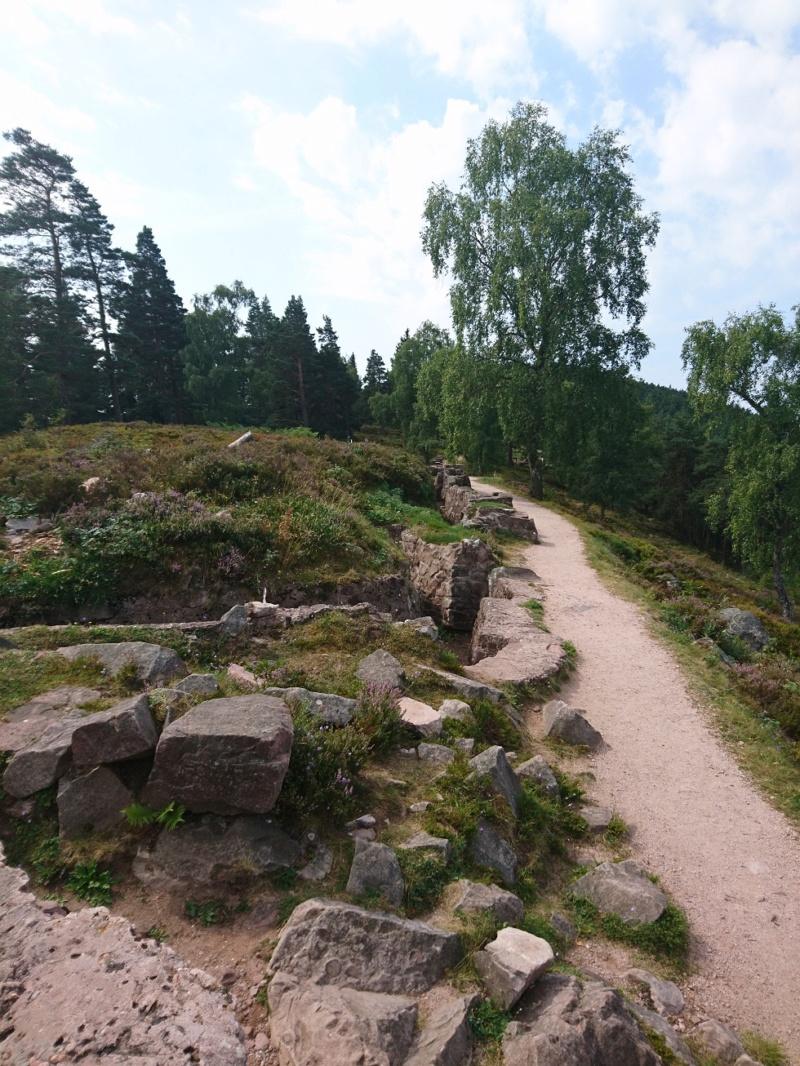 Le champ de bataille du Linge (1ère partie) Dsc_0268
