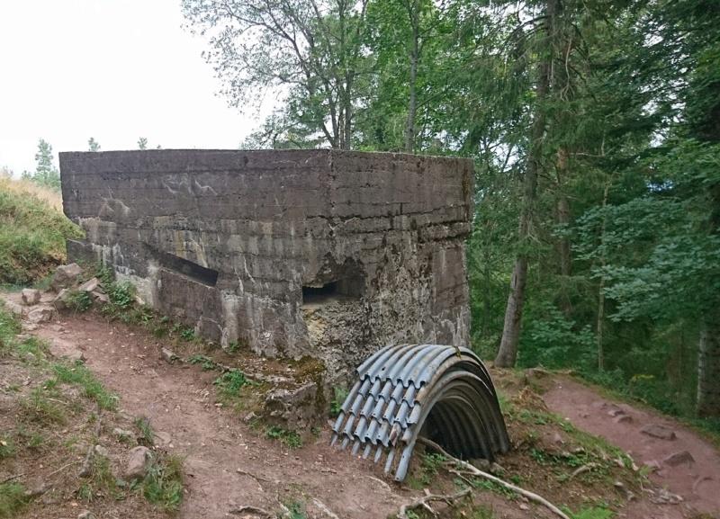Le champ de bataille du Linge (1ère partie) Dsc_0269