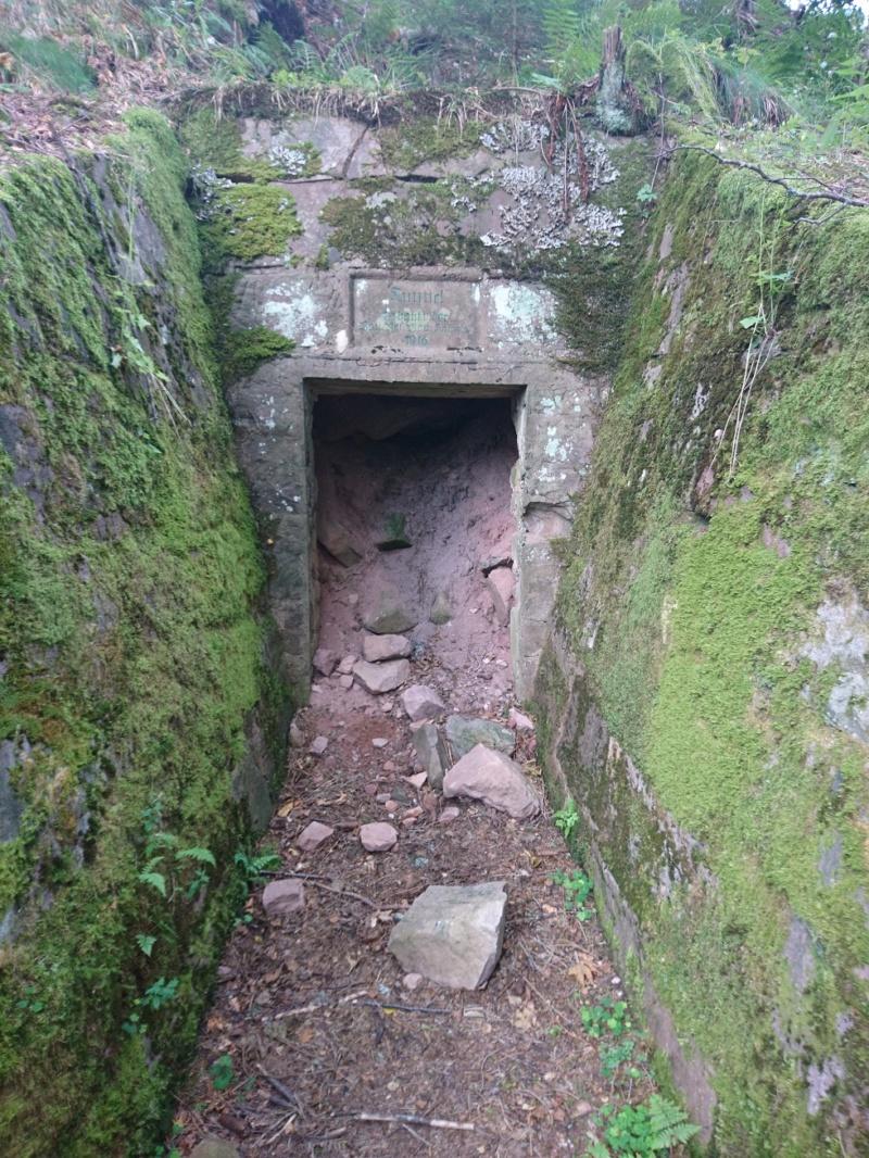 Le champ de bataille du Linge (1ère partie) Dsc_0274