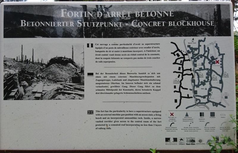 Le champ de bataille du Linge (1ère partie) Dsc_0277