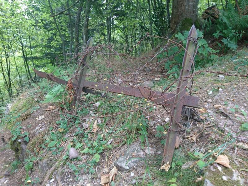 Le champ de bataille du Linge (1ère partie) Dsc_0278