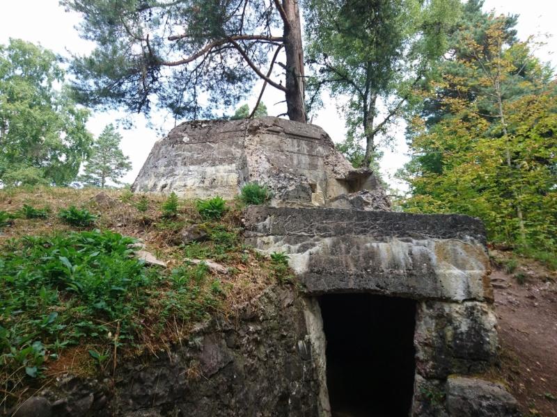 Le champ de bataille du Linge (1ère partie) Dsc_0279
