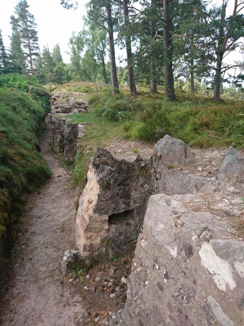 Le champ de bataille du Linge (1ère partie) Dsc_0281