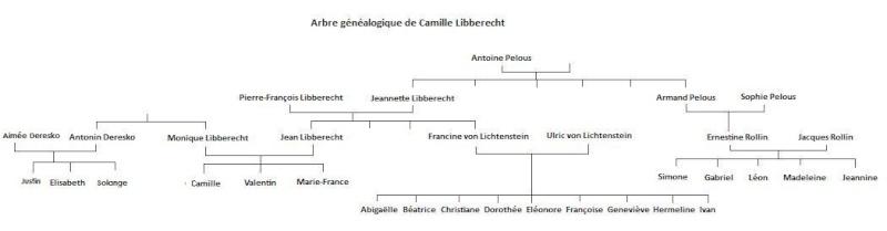 Camille Libberecht Arbre_11