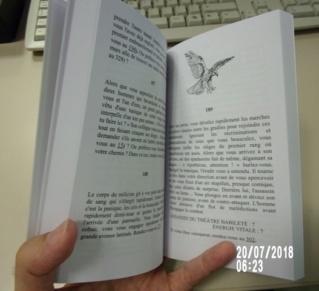 Retour à Griseguilde - Page 7 Rimg0013