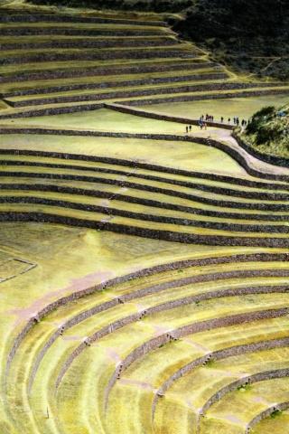 MORAY (Pérou) Voyage11