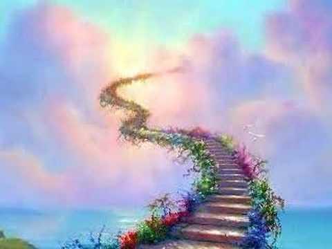 Une fleur un arc en ciel ... Violette  - Page 2 Violet10