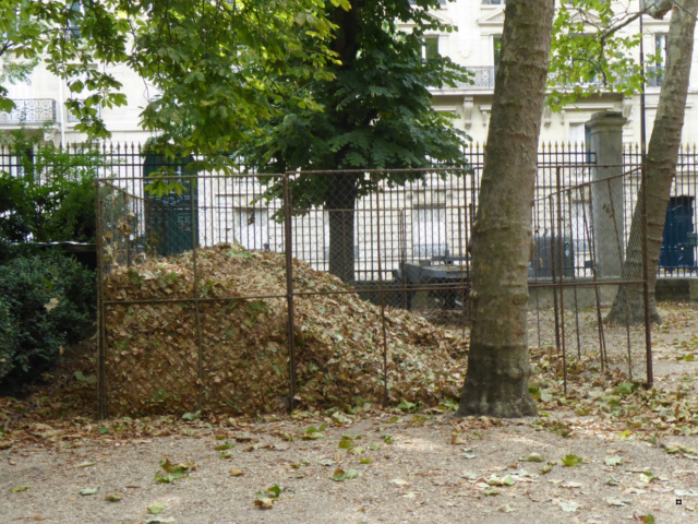 Choses vues dans le jardin du Luxembourg, à Paris - Page 7 1-00120