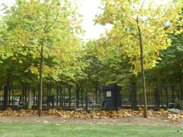 Choses vues dans le jardin du Luxembourg, à Paris - Page 7 1-00213