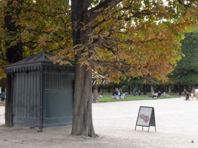 Choses vues dans le jardin du Luxembourg, à Paris - Page 7 1-00418