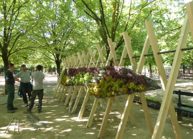 Choses vues dans le jardin du Luxembourg, à Paris - Page 7 1-00621