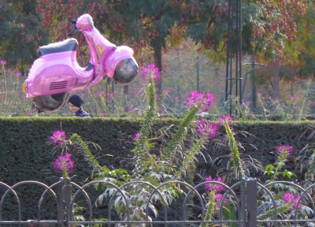 Choses vues dans le jardin du Luxembourg, à Paris - Page 6 1-01212