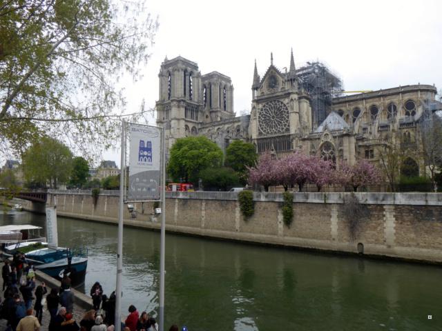 Notre Dame, face sud, sous un ciel gris. 1-01715