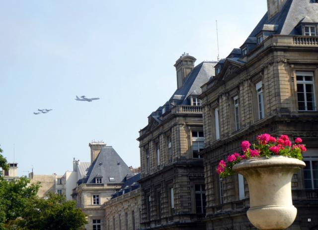 Choses vues dans le jardin du Luxembourg, à Paris - Page 6 1-avio12
