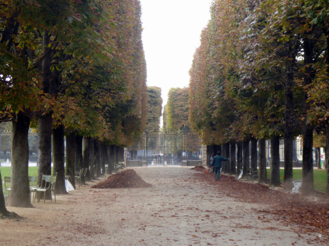 Choses vues dans le jardin du Luxembourg, à Paris - Page 6 1-lux_11