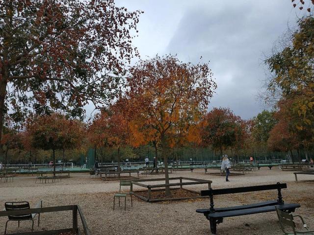 Choses vues dans le jardin du Luxembourg, à Paris - Page 6 1-thum11