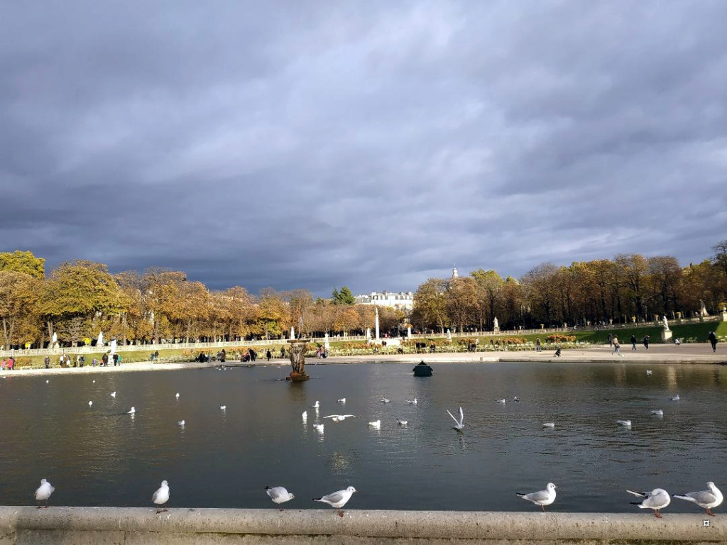 Choses vues dans le jardin du Luxembourg, à Paris - Page 7 1-thum15
