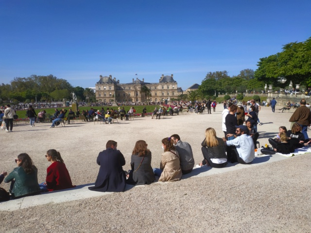 Choses vues dans le jardin du Luxembourg, à Paris - Page 9 16194611