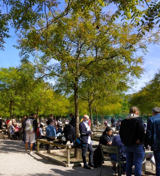 Choses vues dans le jardin du Luxembourg, à Paris - Page 9 16194614
