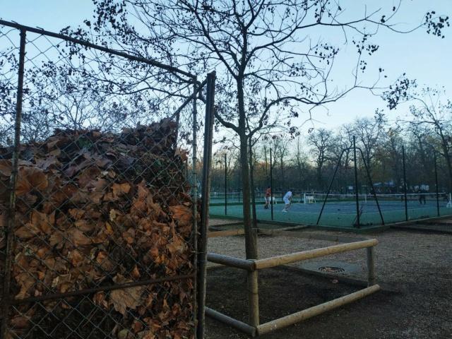 Choses vues dans le jardin du Luxembourg, à Paris - Page 8 Jardin13