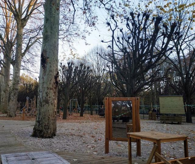Choses vues dans le jardin du Luxembourg, à Paris - Page 8 Jardin14