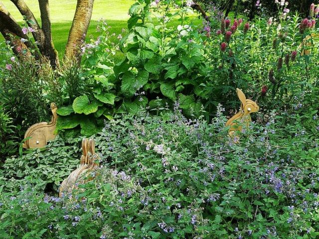 Choses vues dans le jardin du Luxembourg, à Paris - Page 9 Jardin19