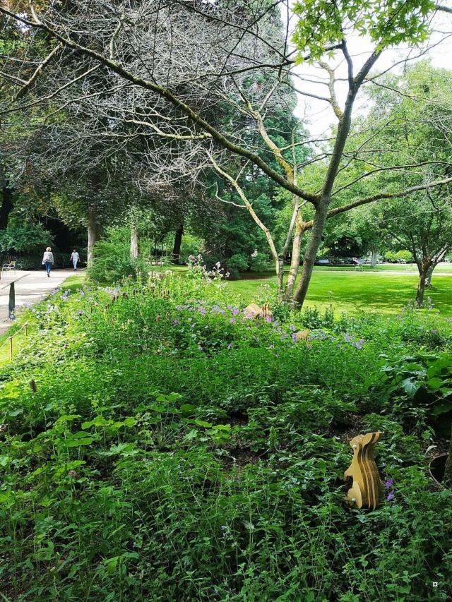 Choses vues dans le jardin du Luxembourg, à Paris - Page 9 Jardin20