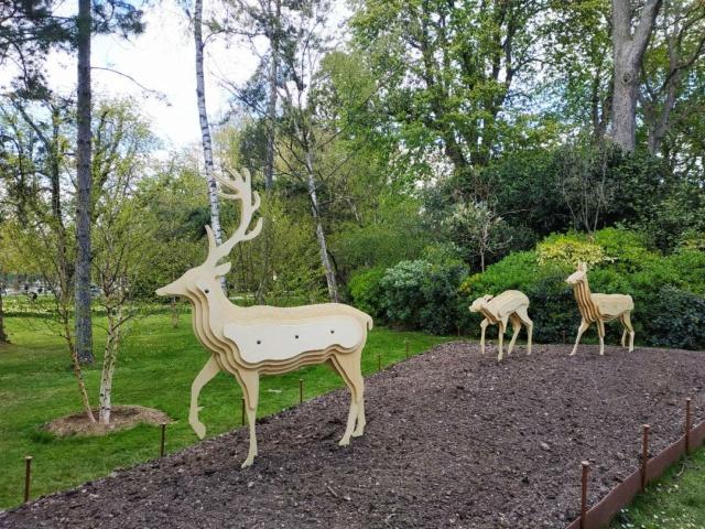 Choses vues dans le jardin du Luxembourg, à Paris - Page 9 Lm210