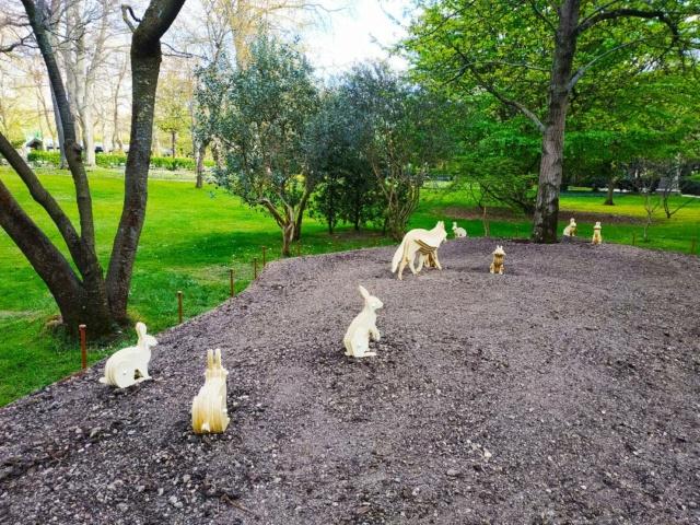 Choses vues dans le jardin du Luxembourg, à Paris - Page 9 Lm310