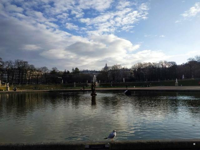 Choses vues dans le jardin du Luxembourg, à Paris - Page 9 Lux1er10