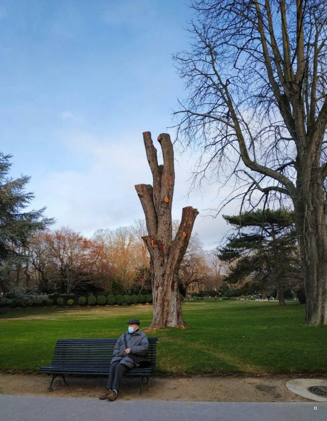 Choses vues dans le jardin du Luxembourg, à Paris - Page 9 Lux_c10