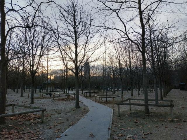 Choses vues dans le jardin du Luxembourg, à Paris - Page 9 Luxe10
