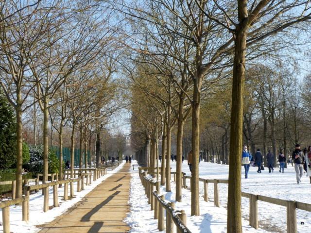 Choses vues dans le jardin du Luxembourg, à Paris - Page 9 Neige210