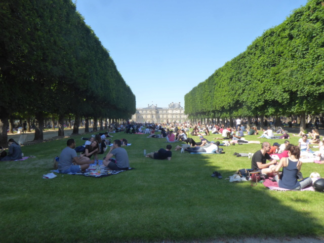 Choses vues dans le jardin du Luxembourg, à Paris - Page 8 P1050511
