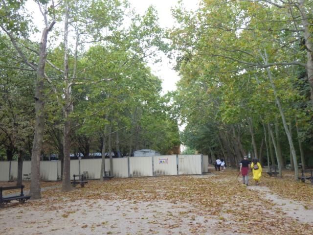 Choses vues dans le jardin du Luxembourg, à Paris - Page 8 P1050614