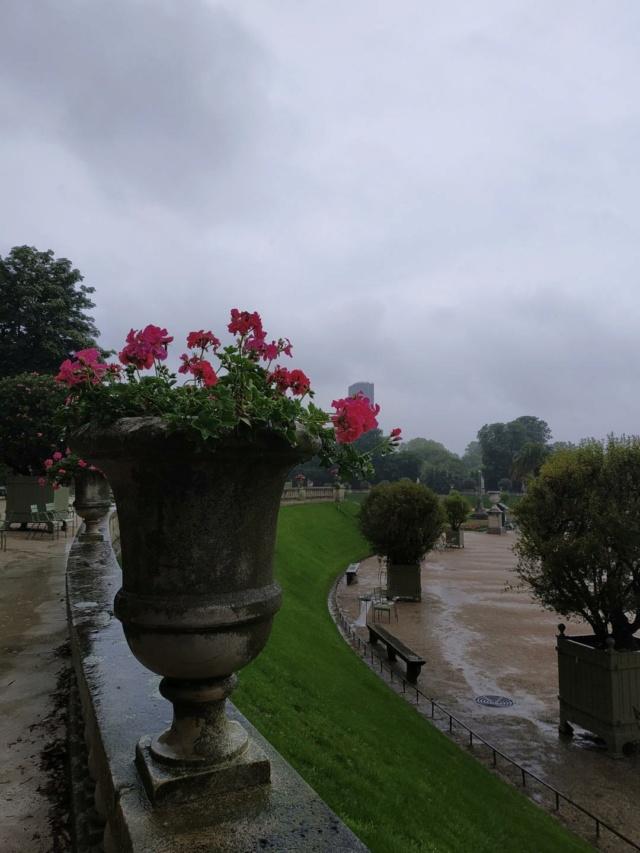 Choses vues dans le jardin du Luxembourg, à Paris - Page 9 Pluie10